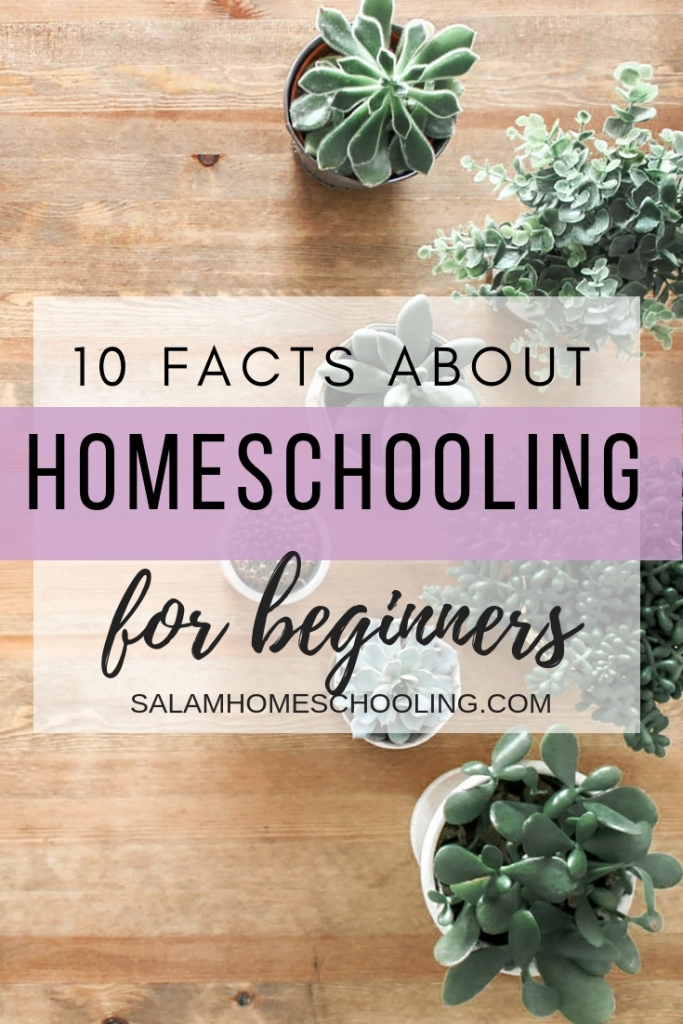 10 Facts about homeschooling for beginners