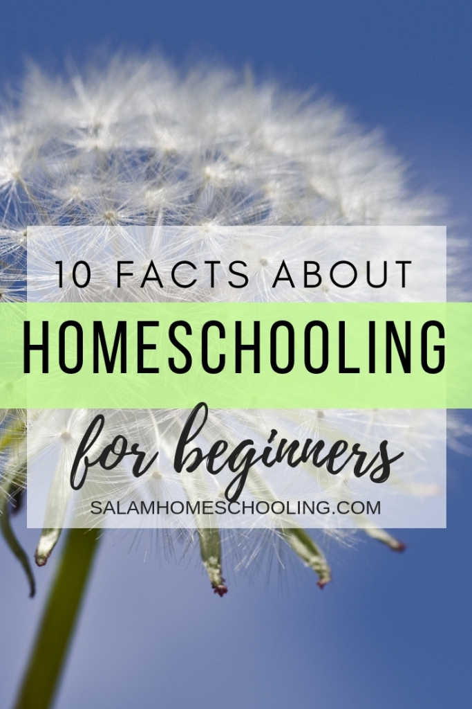 10 Fact about homeschooling for the homeschool novice How to start homeschooling for Muslims